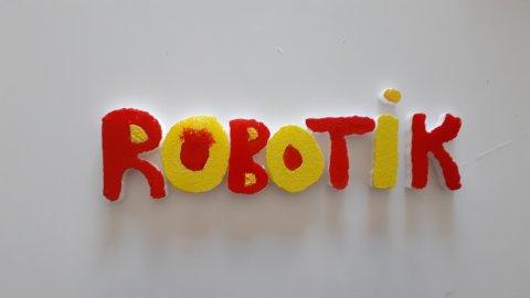 Robotik Kodlama Meraklıları (Ankara Merkezli Tüm Türkiye)